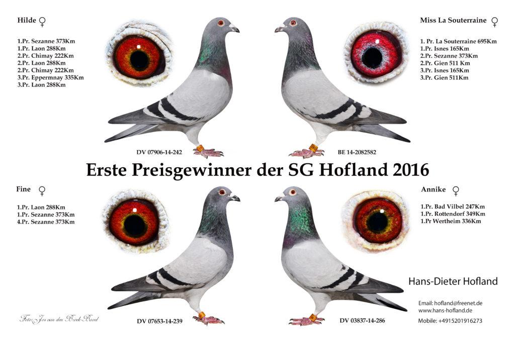erste-preis-gewinner-2016
