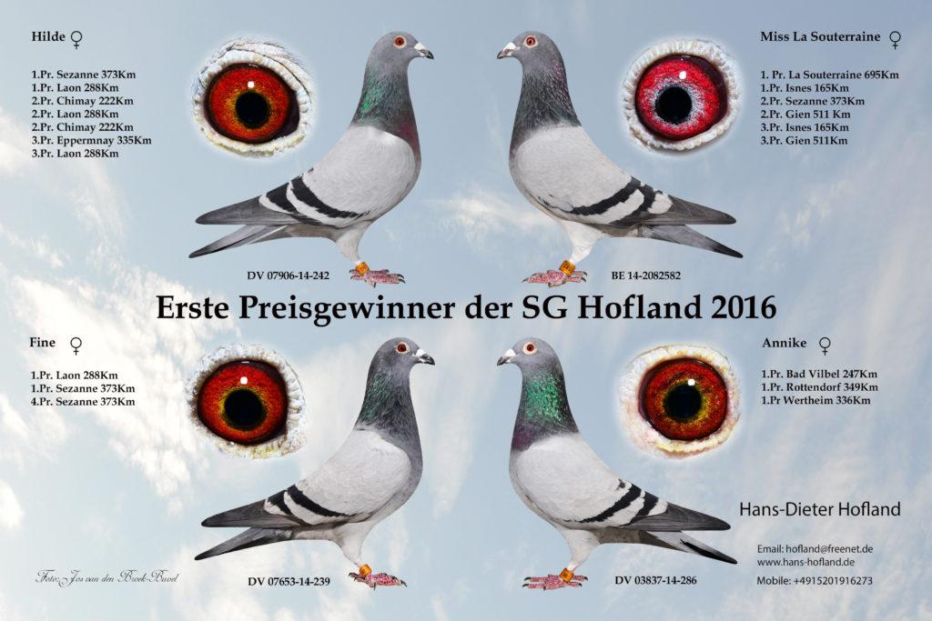 erste-preis-gewinner-2016-bl